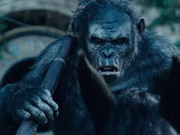 Dawn Of The Planet Of The Apes' Final Trailer - Business Insider Closer Look Dawn Of The Planet Apes Series 1 Action 2014 Dawn Of The Planet Apes Behindthescenes Video Collider 104 Best Images On Pinterest The One Last Chance For Peace A Review Concept Art 3d Bluray Review High Def Digest Trailer 2 Tims Film Amazoncom Gary Oldman