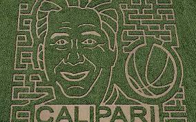Pumpkin Patch Richmond Ky by Corn Maze Likeness Of University Of Kentucky U0027s John Calipari