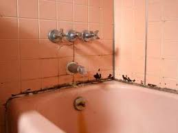 prevent expensive bathroom repairs promaster 513 724 0539