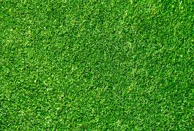 February 2012 At 3537 X 2400 In Seamless Green Grass Texture