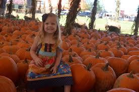Sarasota Pumpkin Festival Location by Photo Gallery Hunsader Farms Pumpkin Festival East County