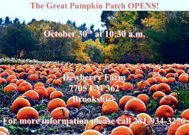 Pumpkin Patch Mobile County Al by Events