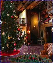 Christmas Tree Saplings Ireland by 3 Ft Christmas Tree Ireland Home Design Ideas