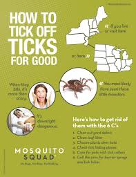 Complete Tick Control Weymouth, MA How To Kill Fleas And Ticks All Naturally Youtube Keep Away From Your Pet Fixcom Get Rid Of Get Amazoncom Dr Greenpet Natural Flea Tick Prevention Tkicide The Art Getting Ticks In Lawns Teresting Rid Bugs Back Yard Ways Avoid Or Deer Best 25 Mosquito Control Ideas On Pinterest Homemade Mosquito Dogs Fast Way Mole Crickets Treatment Control Guide