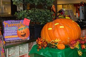 Largest Pumpkin Ever Weight by The Pumpkin Whisperer My U Haul Storymy U Haul Story