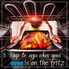 100 Fritz 5 Ways To Cope When Your Oven Is On The Fritz Sweet Happy Nest