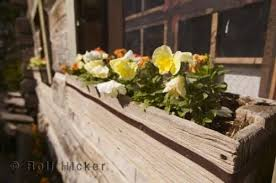 Photo Window Planter Box Flowers