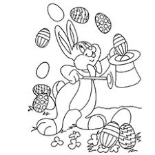 Easter Bnny Magic Show Picture Of Bunny
