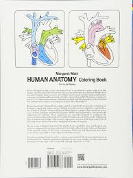 The Anatomy Coloring Book 4th Edition Inspirationa Valid Unique Human 64