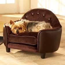 Extra Large Orthopedic Dog Bed by Bedroom Terrific Small Dog Beds Best The Market For Arthritic