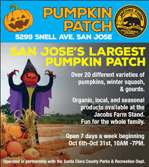 San Jose Pumpkin Patch 2015 by Almaden Valley Lifestyle Home Facebook