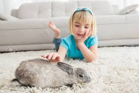 kleines mädchen auf teppich liegend streicheln der kaninchen zu hause im wohnzimmer