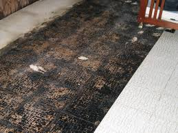 floor asbestos floor removal on for tile vinyl 7