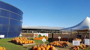 Northwest Ohio Pumpkin Patches by Kuehnert Dairy Farm U0026 Fall Festival