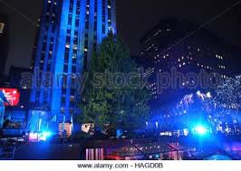 Christmas Tree Rockefeller Center 2016 by 84th Rockefeller Center Christmas Tree Lighting In New York City