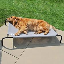 Amazon The Original Elevated Pet Bed By Coolaroo