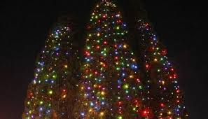 Mr Jingles Christmas Trees Los Angeles Ca by The 45 Best College Holiday Events Best College Reviews