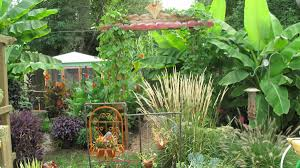 Bill's Tropical Garden In Ohio | Fine Gardening Tropical Backyard Landscaping Ideas Home Decorating Plus For Small Front Yard And The Garden Ipirations Vero Beach Melbourne Fl Landscape And Installation Design Around Pool 25 Spectacular Pictures Decoration Inspired Backyards Excellent Florida Create A Nice Designs Decor