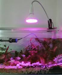e27 led grow light lara with l holder clip led