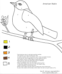 American Robin Nature Sheet