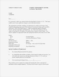 Sample Executive Summary For Resume New Samples Awesome Example