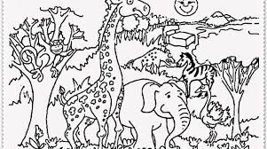 Zoo Animal Coloring Pages Realistic