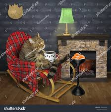 Cat Drinking Black Coffee Wooden Rocking Stock Photo (Edit ... Qvist Rocking Chair Ftstool Argo Graffiti Black Tower Comfort Design The Norraryd Black Rustic Industrial Fniture Patio Wood Living Chairold Age Single Icon In Cartoonblack Style Attractive Ottoman Nursery Walmart Glider Amazoncom Rocker Comfortable Armrest Wood Rocking Chair Images Buying J16 Rar Base Pp Coral Pink Usa Ca 1900 Objects Collection Of