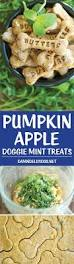 Pumpkin Gave Dog Diarrhea by Best 25 Bad Dog Breath Ideas On Pinterest Cat Vaccinations Dog