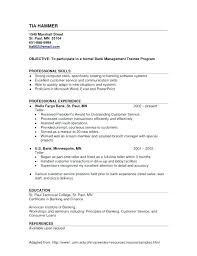 General Resume Objective Samples Good Objectives Timeless