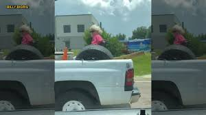 Florida Woman In Wheelchair Spotted Riding In Pickup Bed | Fox News Muscle Trucks Fast Hagerty Articles Old For Sale Redneck Chevy Four Wheel Drive Pickup Truck In Stock Photos Case You Were Unaware There Is A Small R Flickr Pin By Holly Houghton On Dream Pinterest Gm Trucks Gmc Onion True Asian Redneck He Likes Lifted Truck Mes The Burning Horse Fileredneck Truckjpg Wikimedia Commons Bo Skeeterz Bait Tackle And Tow Rc Pickup Ebay Life Vehicles Pack 1 Gta5modscom