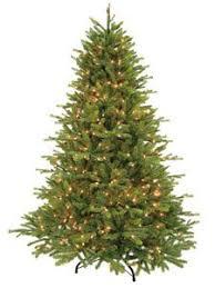 Ashville 6 1 2 Ft Tree With 700 Clear Lights Pennington 7 Artificial Christmas Pre Lit