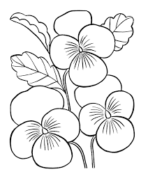 Adult Flower Coloring Pages Inspirational Easy For Adults Color Bros