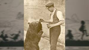 130 Best Winne The Pooh by The Bear Who Inspired Winnie The Pooh Youtube