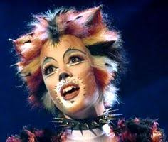 cats on broadway cats the musical ive always wanted to do this for