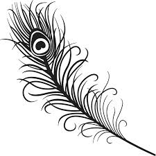 Peacock Feather Outline Images Drawing Of