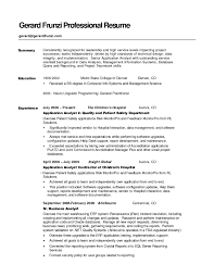 Resume Examples Of Professional Summary New For Example