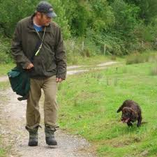The King Pin Of Gundog Training Is OBEDIENCE A Dog Which Not Obedient Trained No Matter How Brilliant Game Finder It May Be