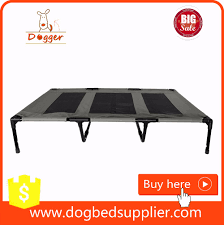 Coolaroo Dog Bed Large by Dog Cot Bed Coolaroo Dog Bed With Cot Beds For Dogs Also Hammock
