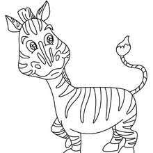 Zebra Picture Coloring Page