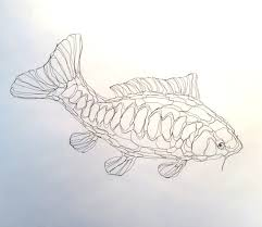 Wire Sculpture 2D Koi Carp Pond Fish Wall Art By