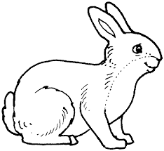 Animals To Color For Kids