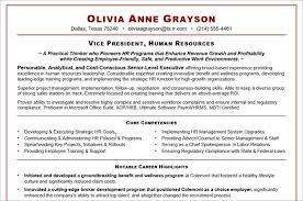 Executive Resume Sample Template