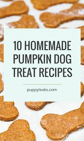 Pumpkin Causes Dog Diarrhea by 10 Homemade Dog Treat Recipes Made With Pumpkin Puppy Leaks