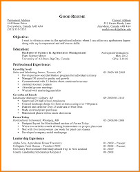 Good Resume Examples For It