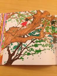Adult Coloring Colouring Books In Vintage Pages Book