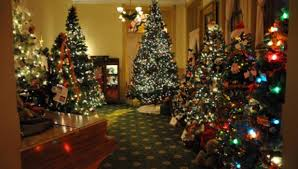 Indoor Christmas Tree Walk Coming To County Museum