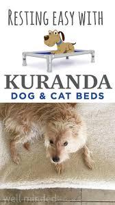 Kuranda Dog Beds by Resting Easy With Kuranda Dog U0026 Cat Beds Sponsored U2014 Well Minded Pets