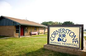 Cornerstone Animal Hospital - Veterinarian In Stephenville, TX USA ... Veterinary Floor Plan All Valley Animal Care Center Animal Care Red Barn Hospital Vetenarian In Dahlonega Ga Usa Taking Of Sick Animals At Breyer Horses Stablemates Vet Teacher Arrested After Alleged Attack The Nugget Northeast Services Shelby County Missouri 37 Best Blue Frog Offices Images On Pinterest Cstruction Contact