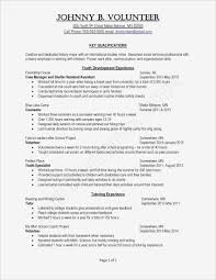 100 Extra Curricular Activities For Resume Samples Curricular New Example