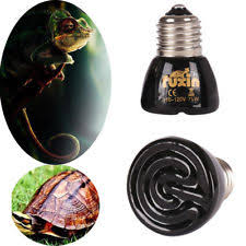 Reptile Heat Lamps Uk by Heat Lamps For Reptiles Ebay